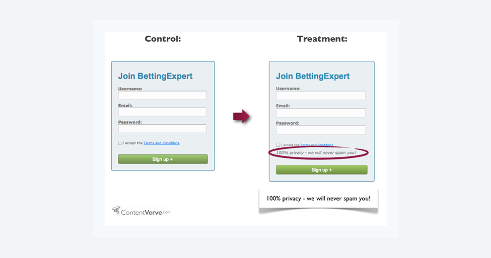 example of privacy and spam treaement in opt-in forms